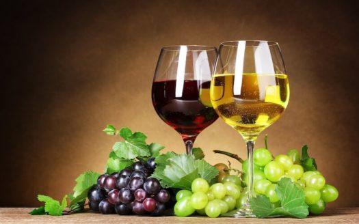 enoturismo-costa-brava-amantes-del-vino